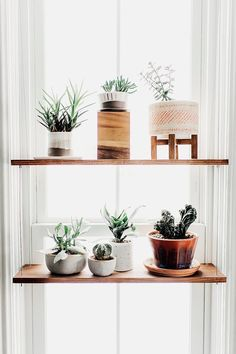 Home Decor Kitchen, New Kitchen, Kitchen Design, Kitchen Ideas, Space Kitchen, Kitchen With Plants, Funny Kitchen, Kitchen Sinks, Updated Kitchen