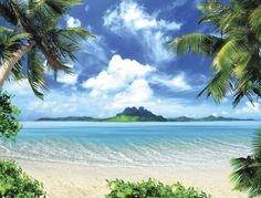 Paradise Beach Wall Mural at www.Surferbedding.com