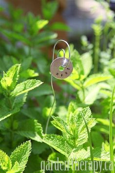 Metal Stamped Plant tag DIY Mint (via Garden Therapy)