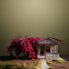 No son fotografías, tampoco cuadros. Son imágenes del desierto con un toque urbano; paisajes calurosos con naturaleza viva. Es la luz, el encuadre, el tope con una realidad manipulada con brillo y sombras. Capturas que permiten transitar entre un camino seco con aspecto de fantasía.Las imágenes de Ed Freeman, que sí son fotografías, vuelcan la …