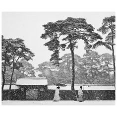 """""""It's one of those images that enters our subconscious and just stays there."""" - Martin Parr  To mark the centenary of Werner Bischof's birth, Magnum's photographers respond to his legacy in images and words. Explore the feature on magnumphotos.com today. Link in bio.  PHOTO: Courtyard of the Meiji shrine. Tokyo, Japan. 1951. © #WernerBischof/#MagnumPhotos"""