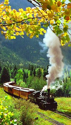 Train In Colorado