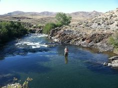 Idaho Rivers and Fis
