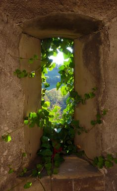 Auf dem Land - To The Country / Durchgang - Portal - Tor - Tunneln - Bogen - Höhle / Passage - Portal - Gate - Tunnels - Bow - Cave Beautiful World, Beautiful Places, Beautiful Pictures, Old Windows, Windows And Doors, Window View, Through The Window, Doorway, Belle Photo