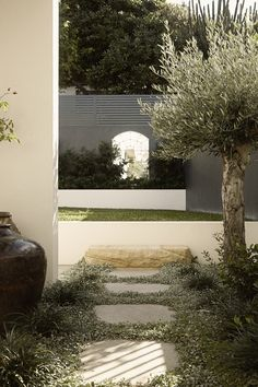 Featuring a 20 yr old olive tree and 110 year old Chinese wine urns