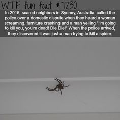 Neighbors thought this man was beating his wife… - WTF Fun Fact