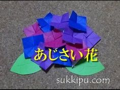 Hydrangea(AJISAI) part1 紫陽花(あじさい)その1 - YouTube
