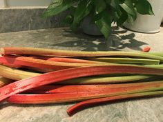 My beautiful rhubarb!