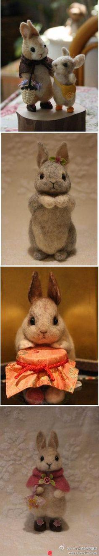 adorables conejos