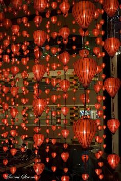 Chinese New Year Lights