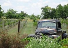Grayson Hills Winery | Texas wine events and Texas Wineries