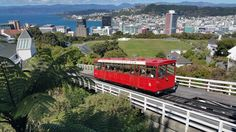 Nice view of Wellington, capital of New Zealand.