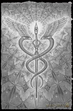 """victoriousvocabulary:  CADUCEUS  [noun]  (from Greek κηρύκειον kērukeion """"herald's staff"""") the staff carried by Hermes in Greek mythology. T..."""