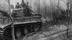 Panzer VI Tiger of Schwere Panzer-Abteilung 509, tank number 113 eastern front