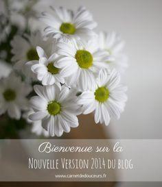 Nouvelle Version du Blog - 2014 http://carnetdedouceurs.fr Blog toulousain - Création - Photographie - Découvertes - par la créatrice de Tampons Mïmo