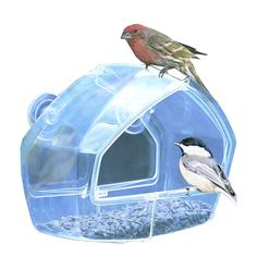 New Birdscapes Clear Window Squirrel Proof Bird Feeder