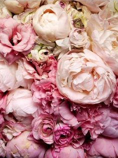 """Oh, how I love peonies. Even if it does mean """"shame"""" in the Victorian language of flowers. I much prefer the second definition;"""" Can't wait 'til ours bloom!"""