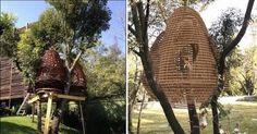 Casa en arbol con forma de colmena