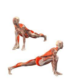 #UTTHITA ASHVA SANCHALASANA Low lunge, left leg straight | YOGA.com