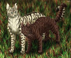 WCFF: The last thing Mousefur saw when she died was Longtail strong and healthy again and she died happily and waited to greet StarClan when the battle passed.