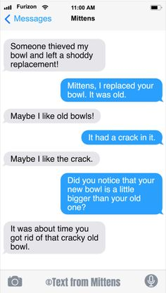 27 All New Texts From Mittens That Will Make You LOL