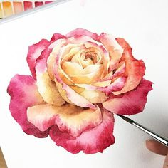 40 Very Easy Watercolor Painting Ideas For Beginners Watercolor Painting Techniques, Easy Watercolor, Watercolor Flowers, Painting & Drawing, Watercolor Paintings, Watercolors, Drawing Flowers, Watercolor Artists, Gouache Painting