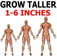 Physic fitness training: How To Grow Taller