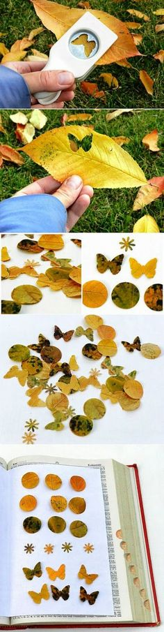 Craft Punched Leaves to create art for autumn - Good for a fall theme and fine motor skills - collect leaves on a walk and put them in the sensory table with hole punchers