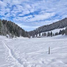 Bildergebnis für hagertal Klausenberg Berg, Snow, Outdoor, Outdoors, Outdoor Games, The Great Outdoors, Eyes, Let It Snow