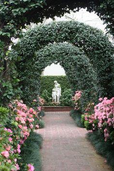 Love to walk in the garden