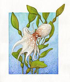 Octopus in Kelp Forest by Noadi