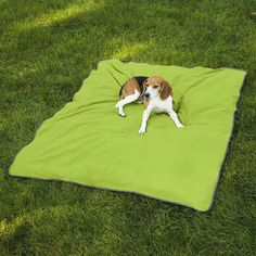 Allow your dog to lounge comfortably outside, free from pesky biting insects, with the Insect Shield Dog Blanket!