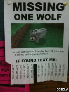 Technically, if it's tamed it's no longer a wolf but is in fact a dog. I'm so gonna print this and put it in a store window :p Minecraft Wolf, Minecraft Comics, Minecraft Funny, How To Play Minecraft, Minecraft Party, Minecraft Stuff, Minecraft Awesome, Minecraft Pictures, Funny Memes