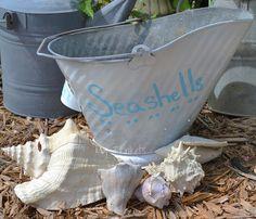 Sea Shell Collecting bucket