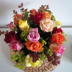 #DadaDesign #Agentur #Bonn #Blumen #Flowers #bunt #StilieundBlüte #Rose