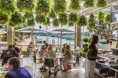 Auckland harbour side restaurants Beach Cottages, Auckland, Pergola, Outdoor Decor, High Tea, Image, Restaurants, Home Decor, Tea