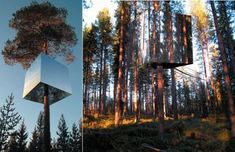 "Treehotel in Sweden. This is the ""mirror cube"" cabin. One day I would love to stay here!!!"