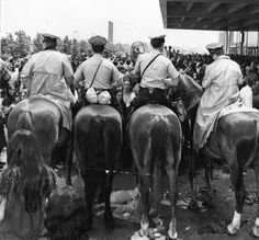 Mounted police in front of crowd at rolling stones concert :: George D. McDowell Philadelphia Evening Bulletin Photographs