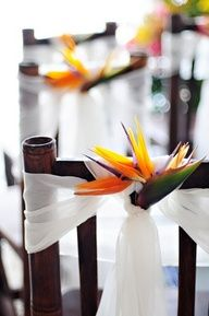 pink plumeria beach wedding cakes | tropical chairs!