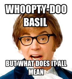 AUSTIN POWERS - The movies we quote to each other