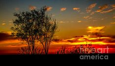 Sunset : See More at http://robert-bales.artistwebsites.com/