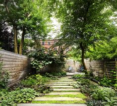 A Narrow backyard with style