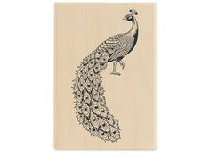 Peacock Rubber Stamp- incorporate it into Sarah's print work??