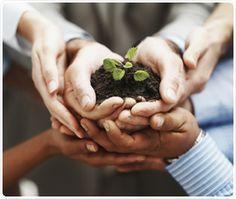   VideVerde   A VideVerde é a primeira empresa de compostagem licenciada pelo INEA. A empresa coleta e composta resíduos orgânicos provenientes do setor público e privado.