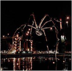 Spider at Night. Hasselblad Biogon lens w/Voigtlander Viewfinder w/Kodak Portra Shot at and EV 8 w/tripod. Kodak Portra, Love Photography, Tripod, Spider, Vietnam, Lens, Night, Spiders, Klance