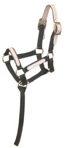 Miniature Nylon Break-Away Halter by JT. $4.95. Look no further, the perfect classically styled nylon halter for you miniature horse! Leather overlay on nose and cheeks. Double buckle safety crown allows adjustment, and special miniature adjustment at throat and chin, allows for moving without the bulk of a buckle! Removable nylon catch strap in case you need it for hard to catch little ones.