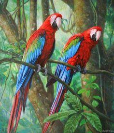 pinturas-de-paisajes-decorativos-con-aves Pretty Birds, Beautiful Birds, Animals Beautiful, Cute Animals, Tropical Birds, Exotic Birds, Colorful Birds, Macaw Parrot For Sale, Parrot Image