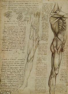 Drawings of Da Vinci