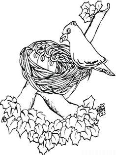 Bird Decorating Her Bird Nest Coloring Pages : Best Place to Color Spring Coloring Pages, Coloring Pages For Kids, Online Coloring, To Color, More Pictures, Hello Everyone, Nest, Google, Bird