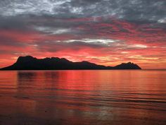 """""""The best place to watch the sunset is at Bako National Park,"""" Sarawak's oldest national park on the island of Borneo. — Seyhan G."""